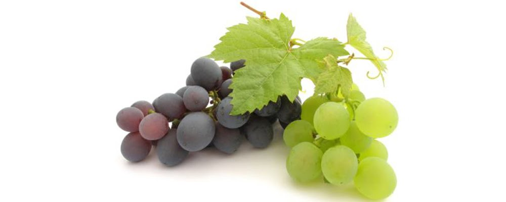 picture for illustration purposes - table grape