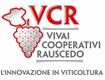 http://www.vivairauscedo.com/en